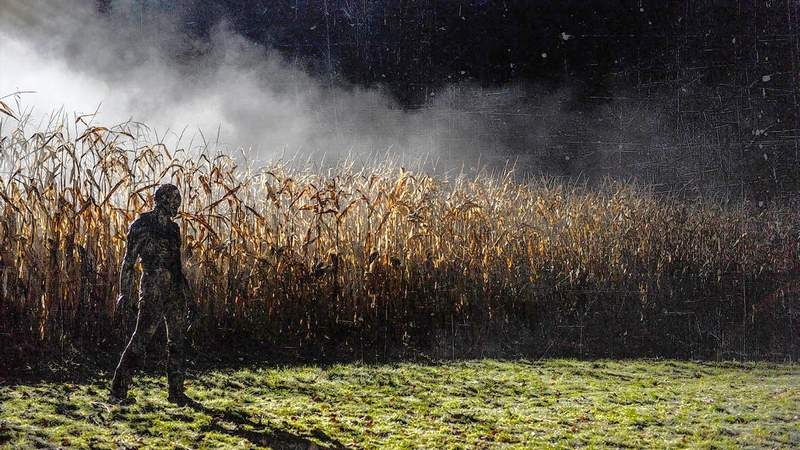"A creepy Pennsylvania cornfield is featured in ""Be Afraid,"" a film by Harrisburg native John Hollaway"