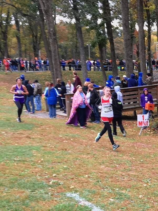 SeniorBethany Toler of Galatia High School competes at the cross-country sectional hosted by Benton Saturday.