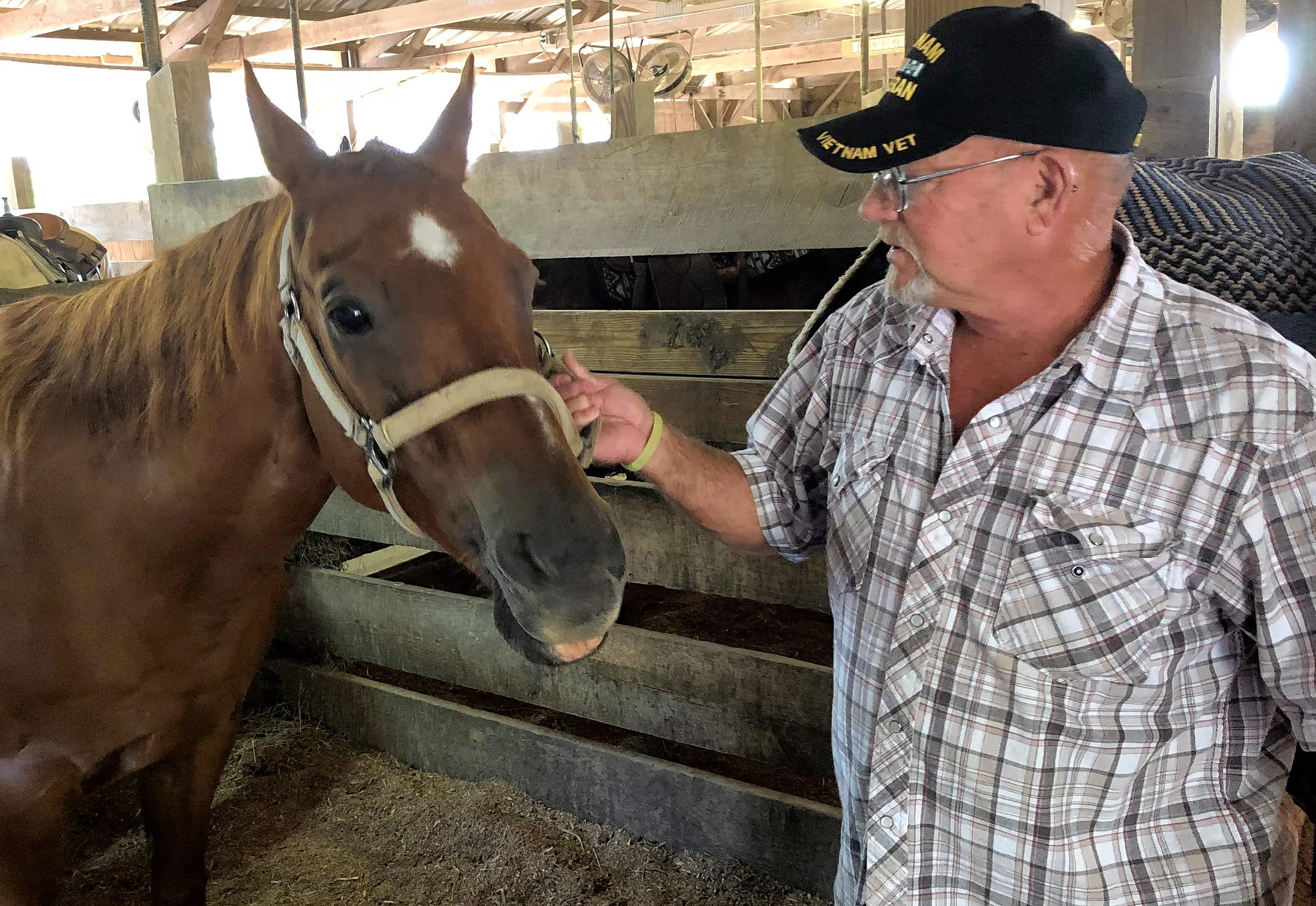 Gary Wyant of Benton gives some attention to Playboy, the horse he regularly rides at Specialized Equine Services and Therapeutic Riding. Wyant, a Vietnam veteran, is one of about a dozen vets who currently participate in the program.