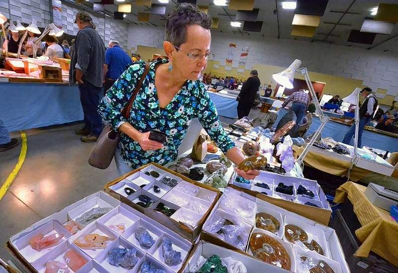 """Cheryl Belobraybic, of Carbondale, took a closer look at this ammonite at one of the booths Saturday at the Southern Illinois Gem, Mineral, Fossil and Jewelry Show at the Pavilion of the City of Marion. She said, """"I've been a rock hound since I was old enough to walk. I mostly collect meteorites now."""""""