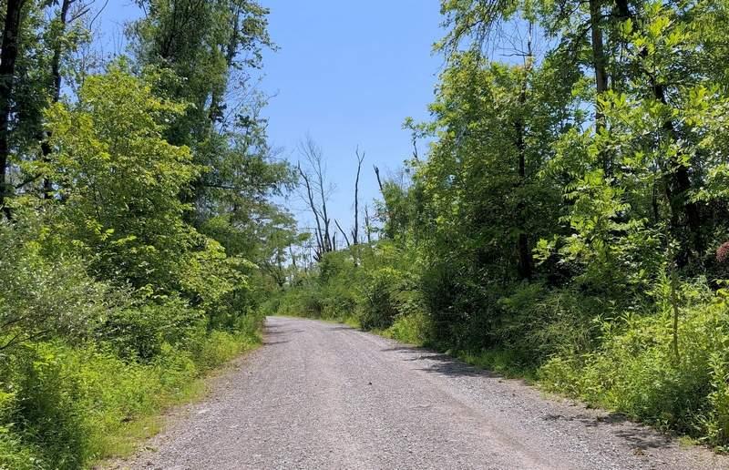 A gravel road winds through native vegetation, leading to Jansco's Stardust Golf Course near Johnston City.